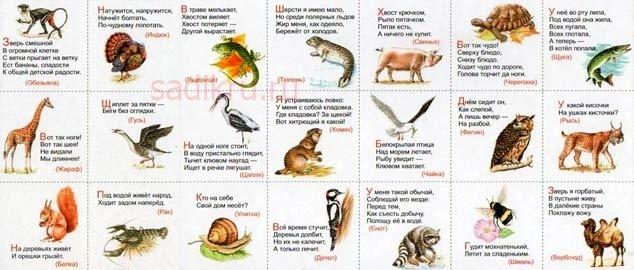 О животных в стихах для детей