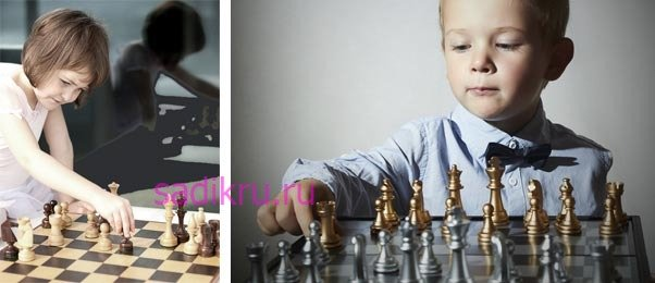 Советы родителям как научить ребенка шахматной игре